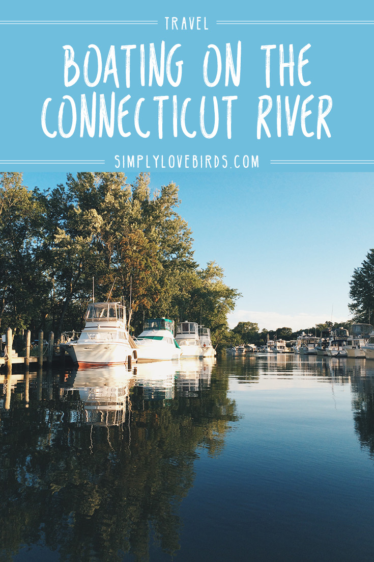 Boating on the Connecticut River / Simplylovebirds