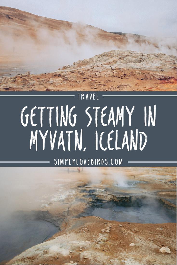 Getting Steamy in Myvatn, Iceland / simplylovebirds.com