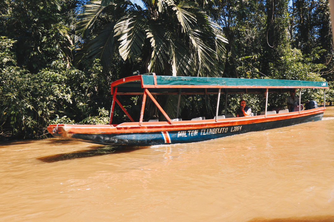 Boats to Tortuguero National Park