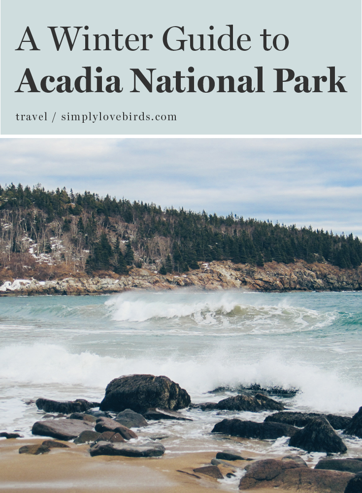 Winter Guide to Acadia National Park in Maine