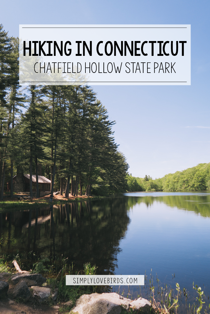 Hiking in Connecticut: Chatfield Hollow State Park