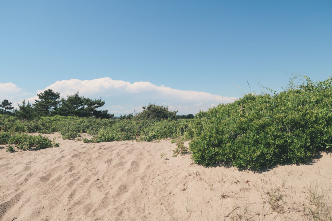 Hammonasset Beach State Park in Madison, Connecticut