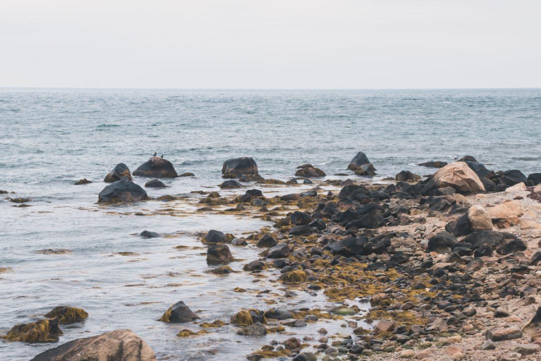 Ocean at North Shore on Block Island