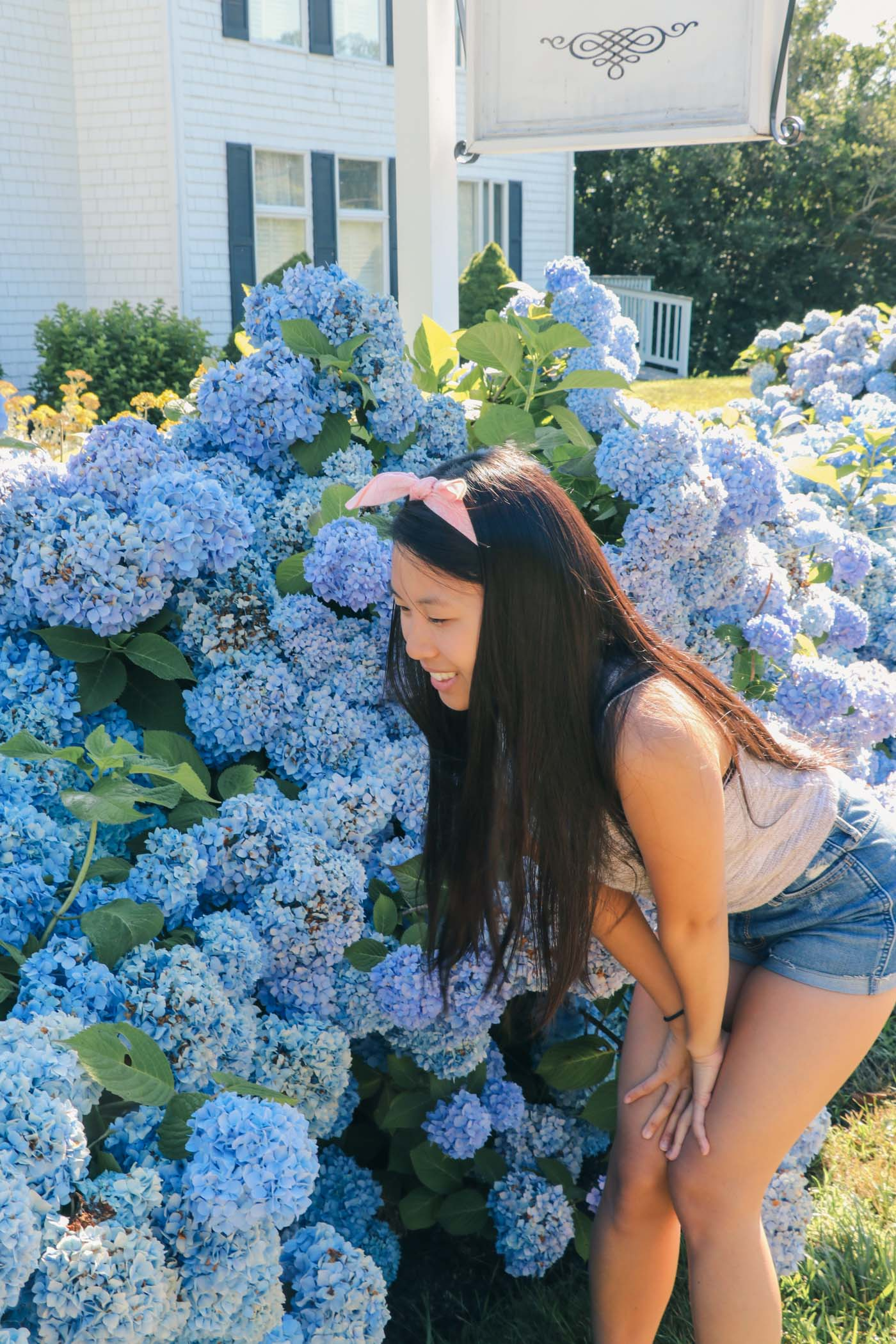 Stop to Smell the Flowers on Block Island