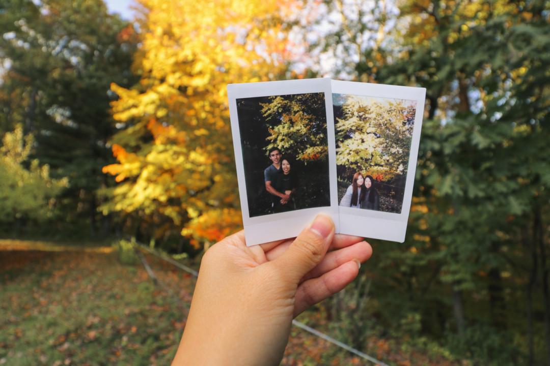 Hello Autumn / Simply Lovebirds