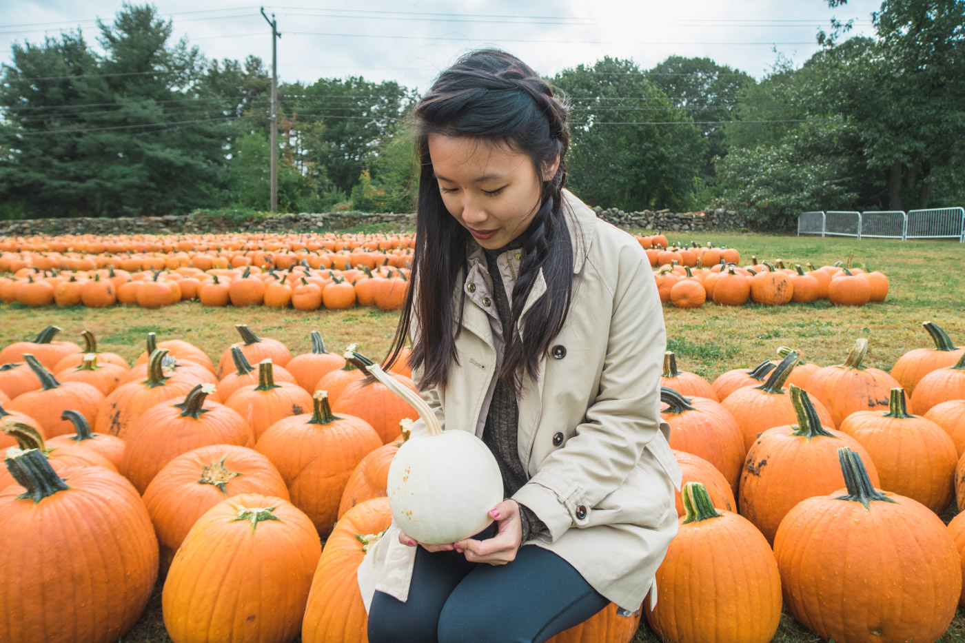 Pumpkin Picking in New England | Simply Lovebirds