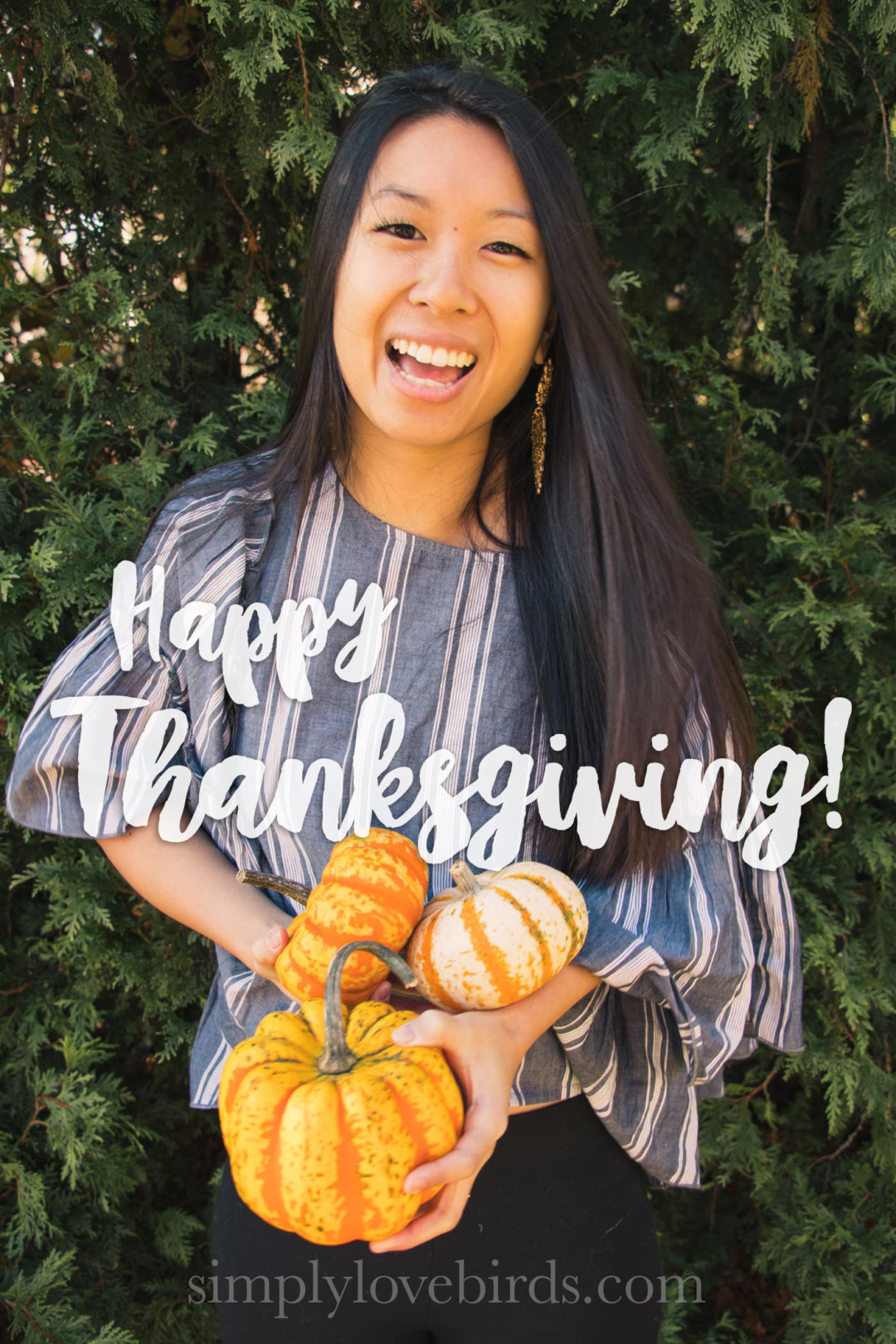 Happy Thanksgiving | simplylovebirds.com