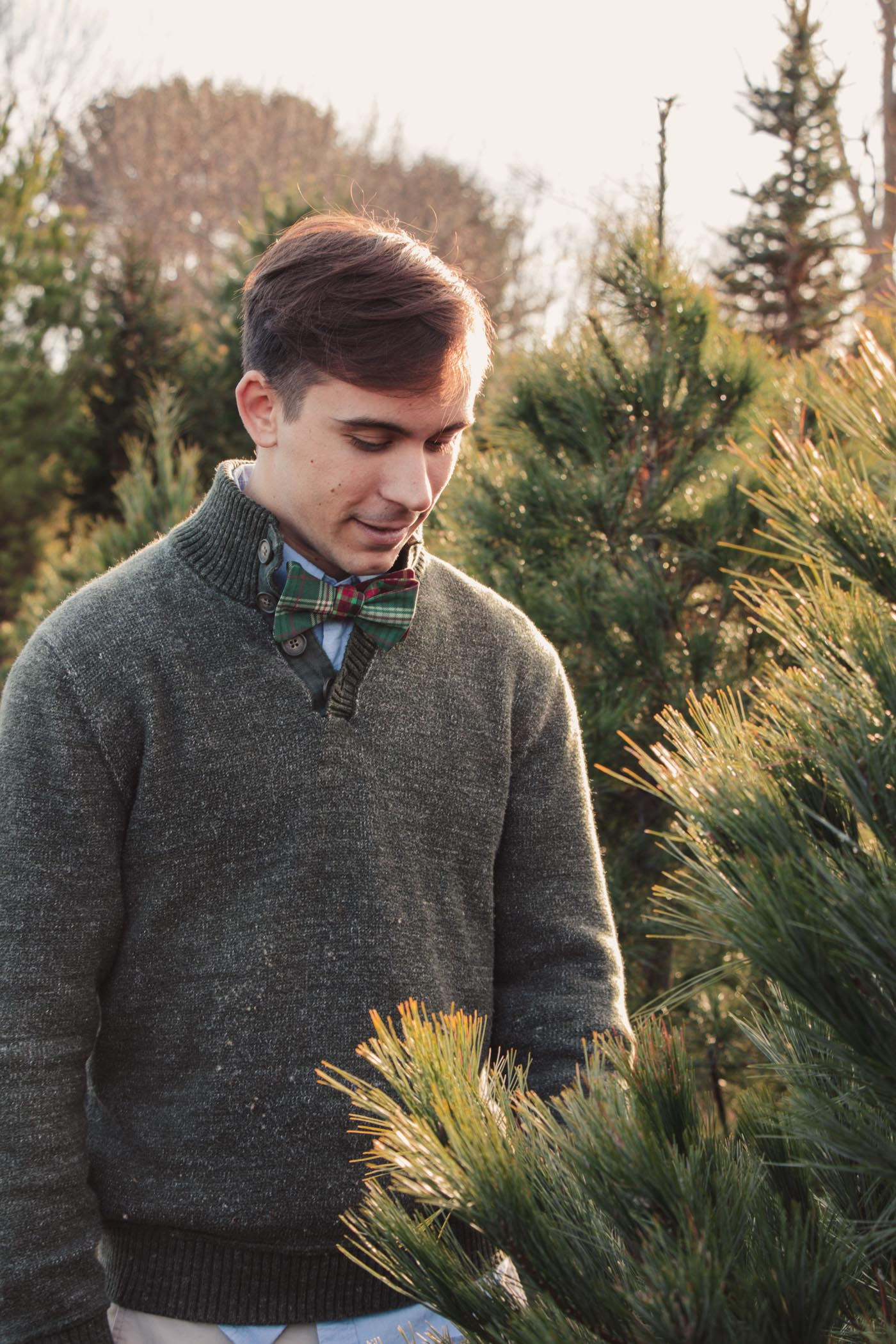 Chopping down our Christmas tree - Simply Lovebirds - New England Lifestyle Blog